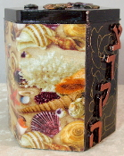 Decorative Tzedakah Box - She Sells Sea Shells