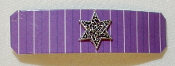 Purple Stripes Barrette