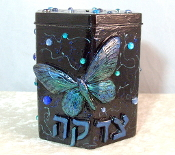 Tzedakah Box - Midnight Butterfly